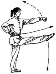 弹腿冲拳 2